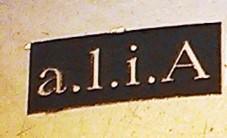 Ali Alexander; with artist permission
